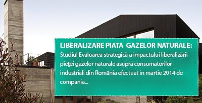 LIBERALIZARE PIATA GAZELOR NATURALE