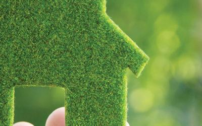 Cat de utile si eficiente sunt programele propuse de MMAP, Casa Verde si Casa Verde Plus