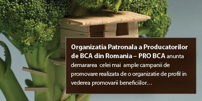 Organizatia Patronala a Producatorilor de BCA din Romania – PRO BCA